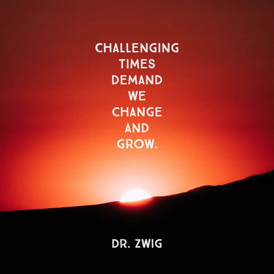 Dr. Zwig Inner Work Exercises and Contemplations
