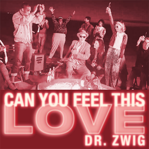 "Dr. Zwig ""Can You Feel This Love"""