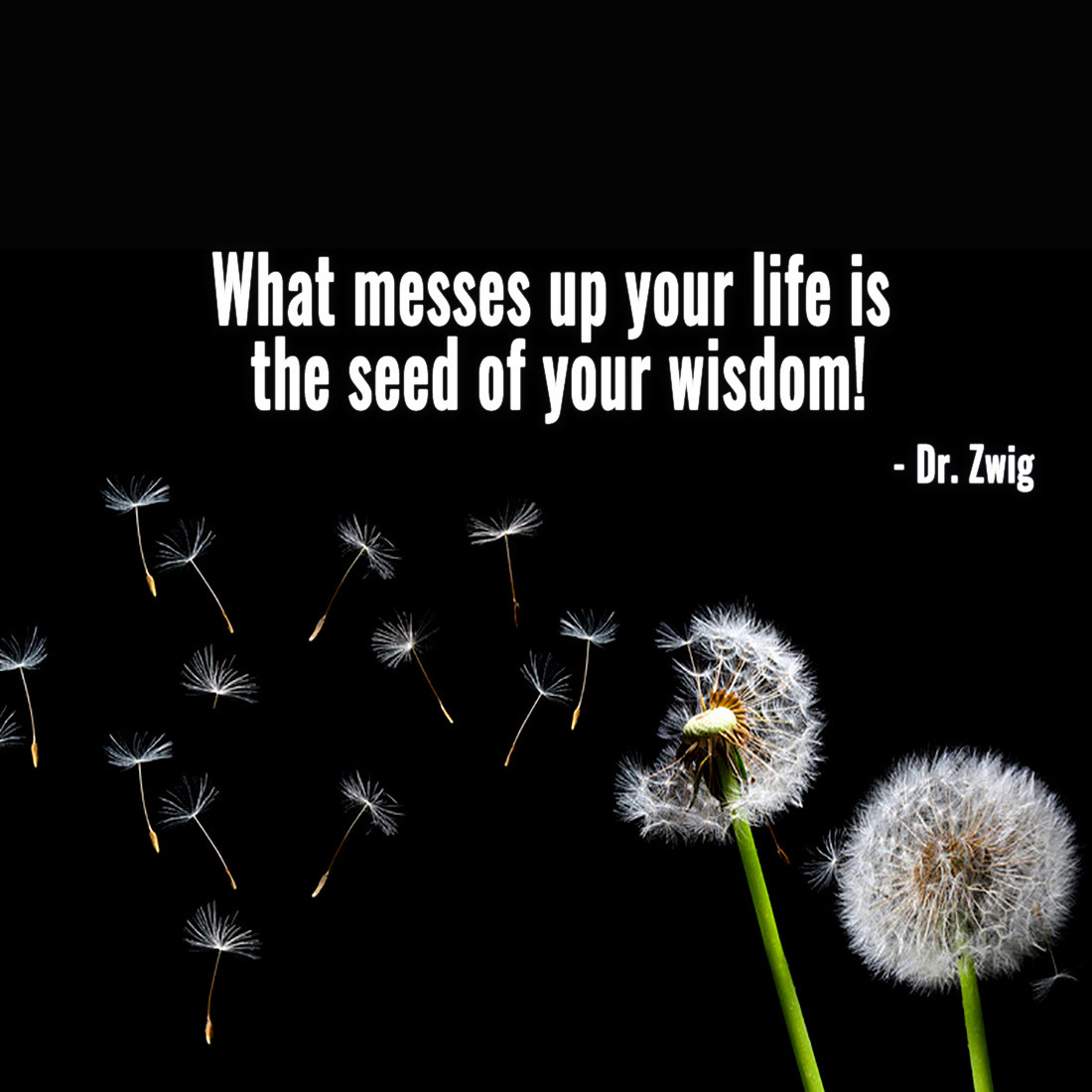 What messes up your life is the seed of your wisdom